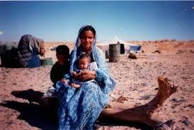 المرأة الصحراوية: بطلة وضحية للغزو المغربي(دراسة 2)