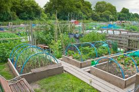 Small Picture Awesome Vegetable Garden Design Ideas Pictures Room Design Ideas