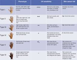 Skin Type Chart A Numerical Classification Scheme For The