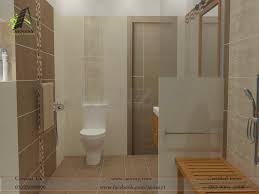 Small Picture Download Bathroom Designs In Pakistan gurdjieffouspenskycom