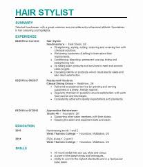 Hair Stylist Resume Examples Cv For Hairdressing Magdalene Project Org