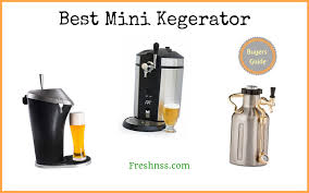 best mini kegerator reviews of 2019