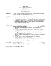 Life Insurance Agent Job Description For Resume Simple Insurance