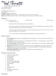 Sample Writer Resume Fantastic Content Writer Resume Template For