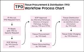 Process Flow Chart Pathology