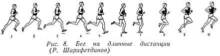 Полиатлон Техника бега на длинные дистанции Легкая атлетика Техника бега на длинные дистанции
