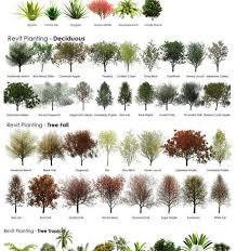 Small Picture Help With Garden Design Solidaria Garden