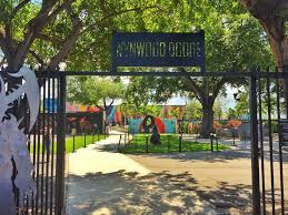 Image result for wynwood miami