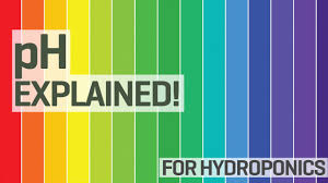 Ph For Hydroponics 101