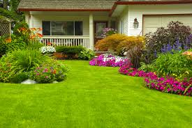 Home Landscape With Low Budget Com Magnificent House Front Design - Home landscape design