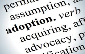 short essay on the adoption