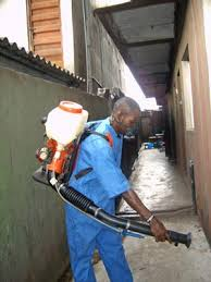 bed bugs fumigation done by an expert