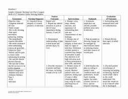 15 Patient Care Plan Template Pdf Word