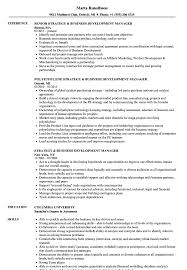 Download Strategy & Business Development Manager Resume Sample as Image file