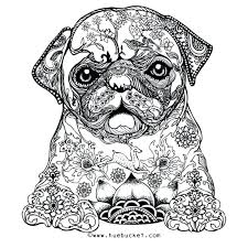 Minimalist Coloring Page Of A Dog R5592 Fancy Coloring Page Dog
