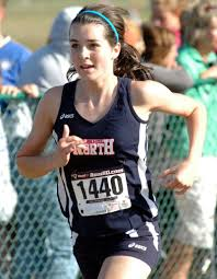 Patriots shine in cross country State Preview meet   Local High School  Sports   tribstar.com