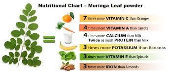 Moringa Comparison Chart Malunngay Moringa Oleifera First Vita Plus