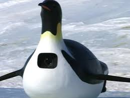 Penguins Depth Chart Penguin Spy Cams Help Bbc Filmmakers Create A Fascinating