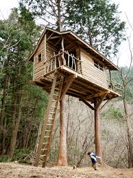 Wonderful Tree House Plans For Two Trees An Amazing Treehouse With Rustic Ship To Concept Design
