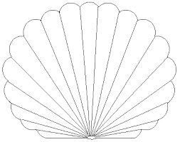 Small Picture Printable Pictures of Seashells Free Printable Coloring Pages