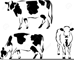 dairy cow silhouette. Fine Silhouette Download This Image As Throughout Dairy Cow Silhouette F