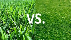 Soccer field grass Background Vector Image Depositphotos Grass Vs Turf Which Is Safer Siowfa16 Science In Our World