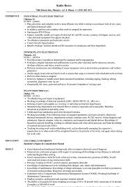 Sample Of Electrician Resumes Plant Electrician Resume Samples Velvet Jobs