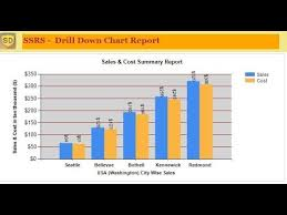 Ssrs Pie Chart Drill Down Ssrs How To Create Drill Down Chart Report