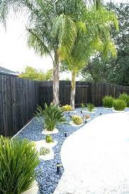 Tree landscaping ideas White Pine Garden Palm Trees Tree Landscape Ideas Designs Best Landscaping Dredanslpentuco Garden Palm Trees Tree Landscape Ideas Designs Best Landscaping