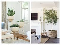 blog1 adding texture plants