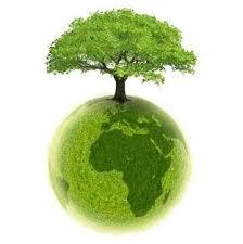 Resultado de imagem para journée mondiale de l'environnement