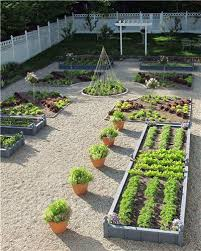 Small Picture Backyard gardening design