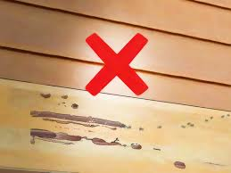 Small Red Ants In Kitchen How To Get Rid Of Tiny Ants With Pictures Wikihow