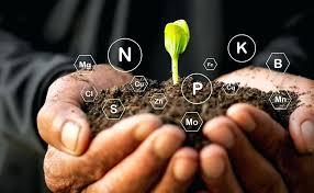 Plant Nutrients Plant Magic Nutrients Chart Plant Nutrients