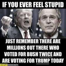 Image result for dumb voters cartoons