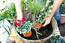 full size of plants planters richardson tx for urns in sun and more how to plant