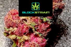 Too Many Strains Not Enough Science Meet The Botanical