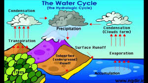 the water cycle printable water cycle the water cycle printable water cycle water cycle water cycle process the water cycle process steps and many others