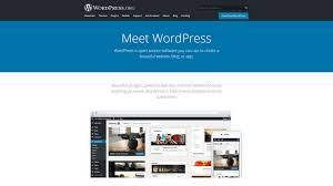 I Want To Build A Website For Free Wix Squarespace Weebly Wordpress Which Platform Is