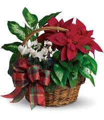 holiday homeing basket