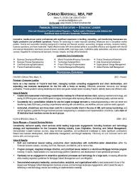 It Consultant Resume Tips Example Sample Change Managem Sevte
