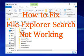 file explorer search not working in