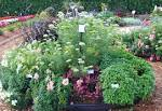 Image result for flower garden ideas pictures