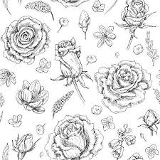 787 Rose Top View Stock Illustrations Cliparts And Royalty Free