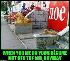 When You Lie On Your Resume Imgflip