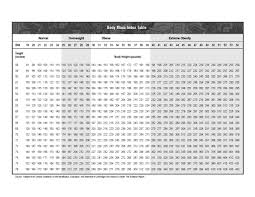 Body Index Chart Body Mass Index Chart Table Example Pdf Format E