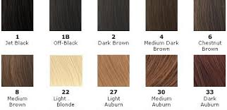 Remy Colour Chart Hair Extensions Color Chart