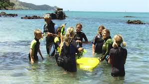 Whangarei Harbour Marine Reserve Places To Go In Northland