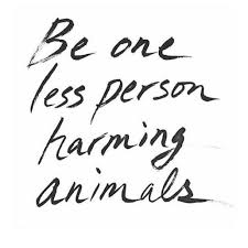 Animal Rights Quotes Awesome Animal Rights Quotes Simple œ� Andrea œ� On Animal Vegans And Animal