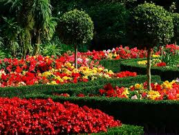 Small Picture 100 Home Garden Design Ideas Android Apps on Google Play